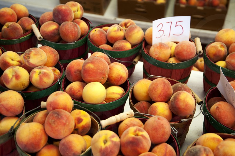 Peaches in baskets at farmers market photo