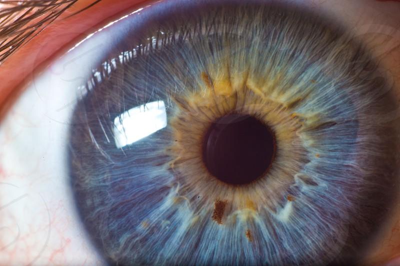 Macro of my husband's eye. photo