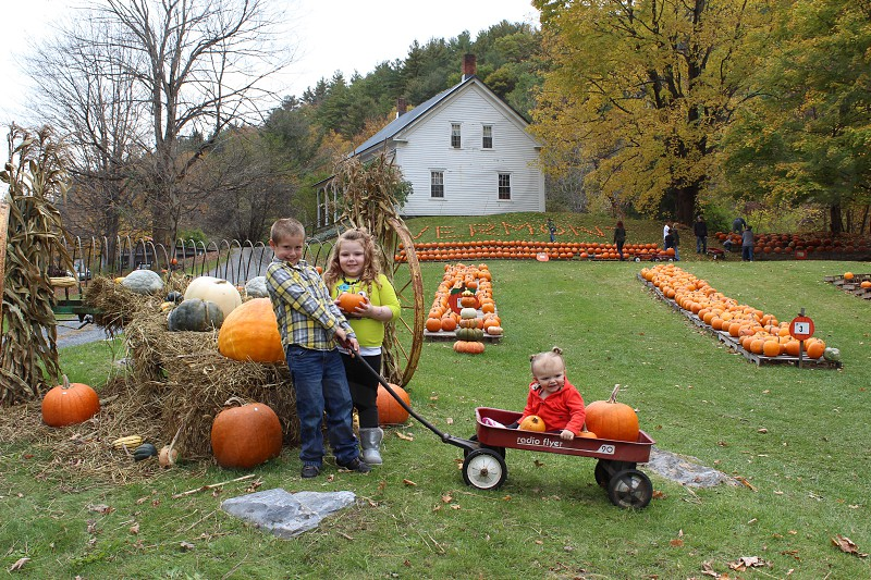 Halloween fall pumpkin patch autumn foliagefarm kids wagon tradition family love photo