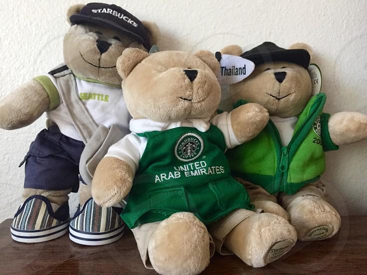 Starbucks bears  photo