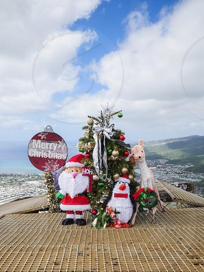 Christmas decoration in Hawaii Honolulu Koko Head crater trail top with Santa tree reindeer dole photo