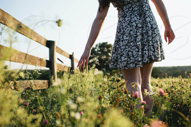 woman in white floral black mini dress walking along green plants inside paddock photo