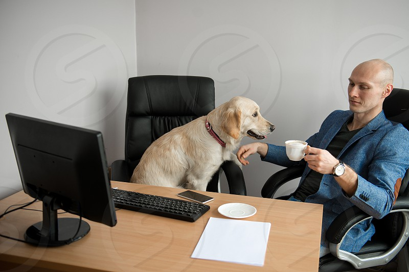 Dog and businesman in the office photo