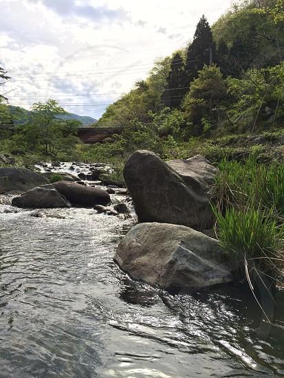 川の上流(Upstream) photo