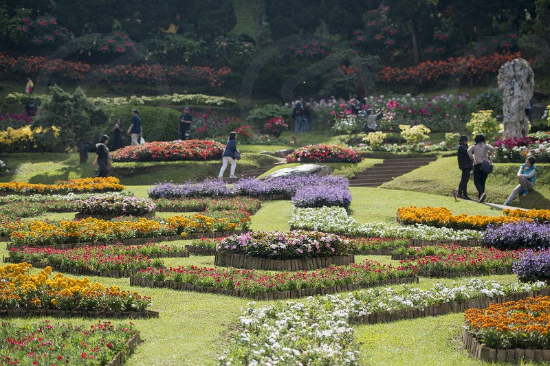 the Mae Fah Luang ornamental garden at the village of  Doi Tung north of the city of Chiang Rai in North Thailand. photo