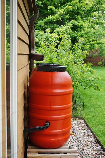 A rain barrel collecting water for gardening photo
