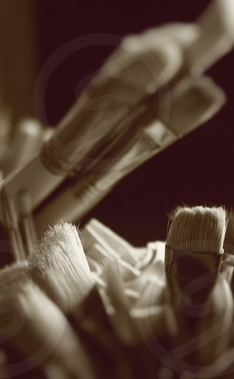 Brushes paint art supplies  photo
