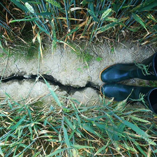 pair of galoshes in middle of grasses with crack in soil photo