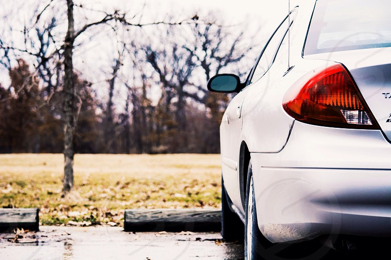 grey car parked near grass photo