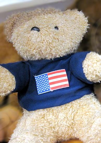 teddybear photo