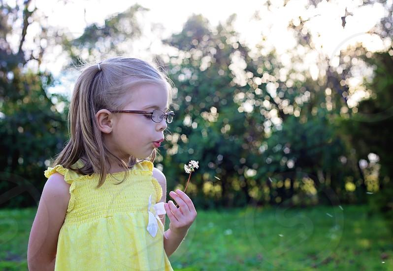 little girl in field blowing flower photo