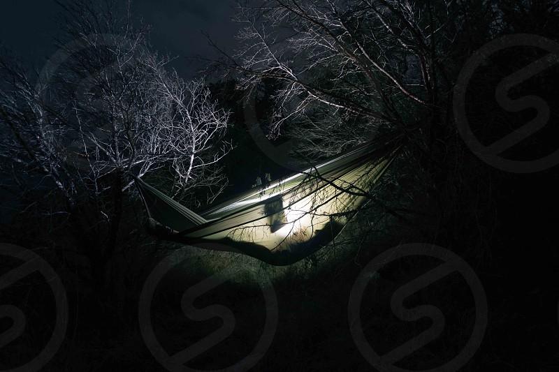 Hammock Sleeping  photo