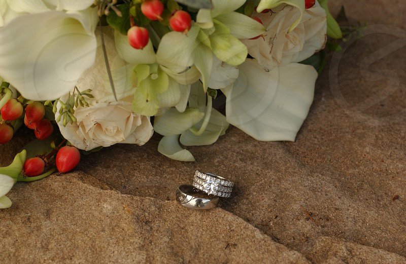Bouquet and rings  photo