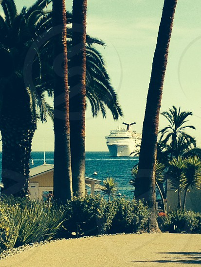 Cruise ship from island photo