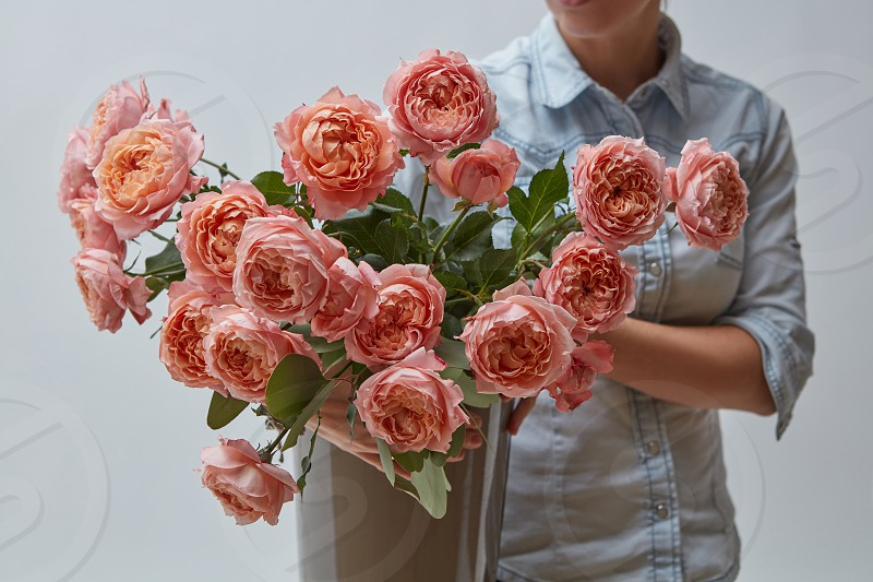A bright bouquet of fresh pink roses in a vase. The girl is holding a flowerpot on a gray background in her hands. A gift for Valentine's Day photo