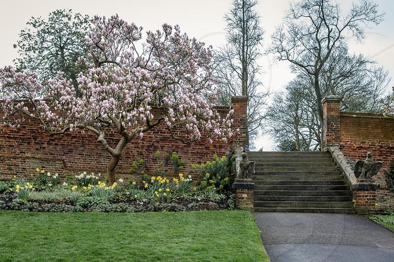 Waterlow Park Highgate London photo