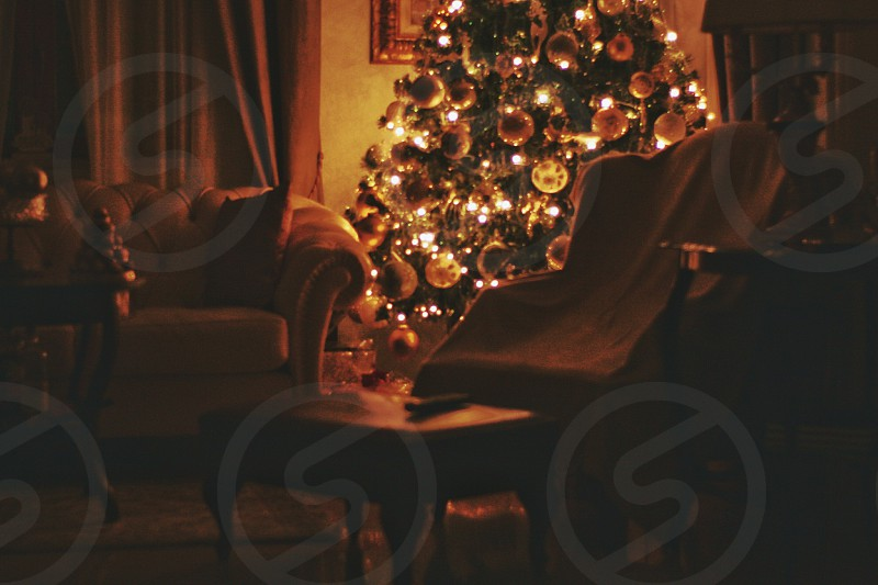 green fully decorated christmas tree beside sofa photo