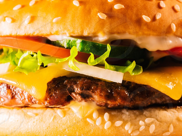 Yummy fast food concept. Fresh homemade grilled burger with meat patty tomatoes cucumber lettuce onion and sesame seeds. Unhealthy lifestyle. Food background. photo