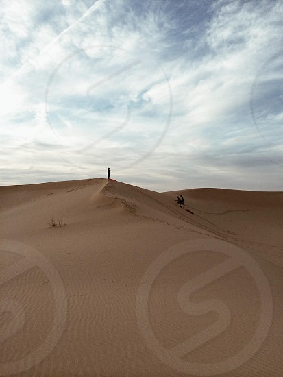 brown dunes photo
