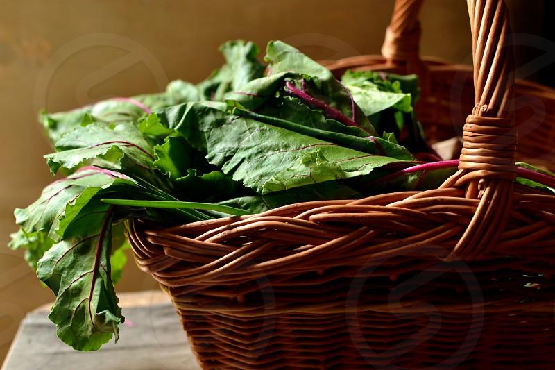 Basket of garden vegetables and greens photo