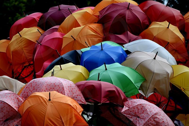 Bright umbrellas photo