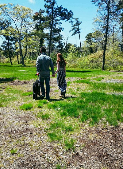 Nantucket Massachusetts vacation family love peaceful peace morning sun sunshine walk stroll relax dog grass trees nature sanctuary  photo
