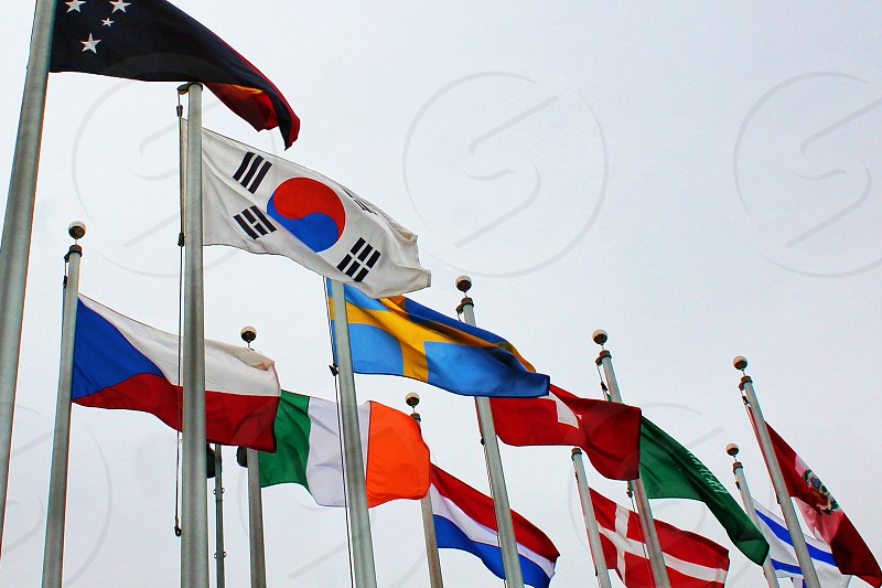 Colorful international flags blowing in the wind photo