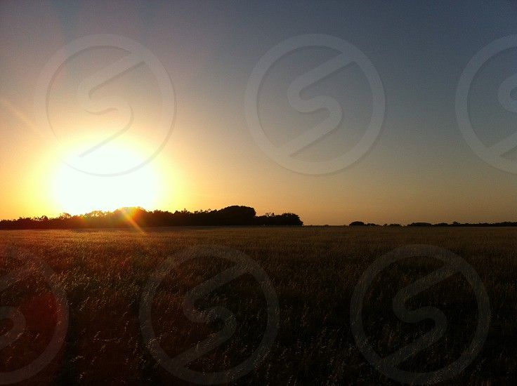 sky sunset scenery nature photo