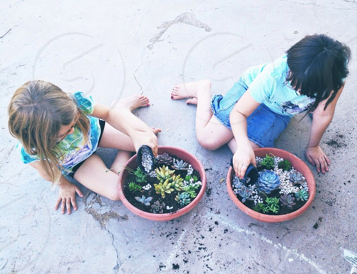 young girls planting succulents in pots photo