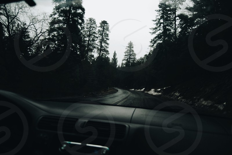 grayscale photo of vehicle windshield overlooking road between trees photo