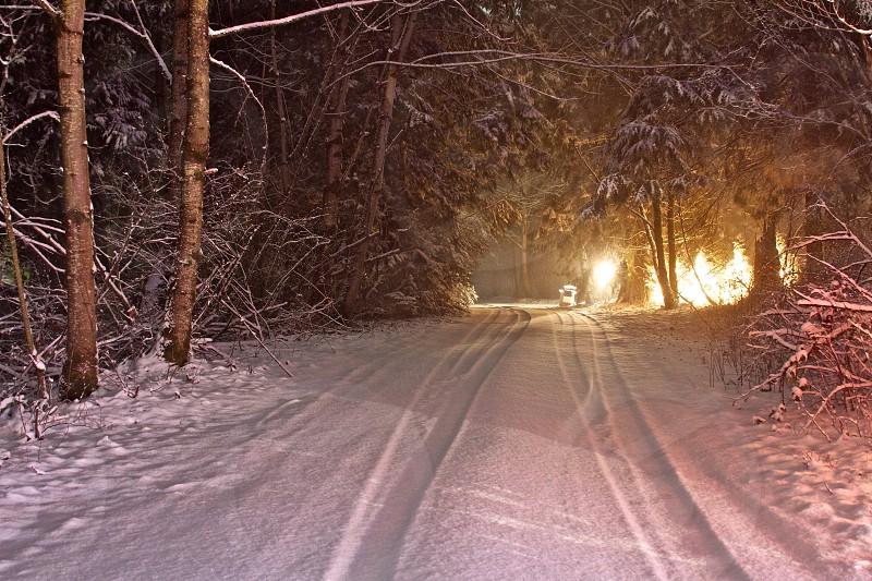 Snowy Lane photo