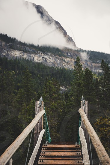 The path to adventure.  photo