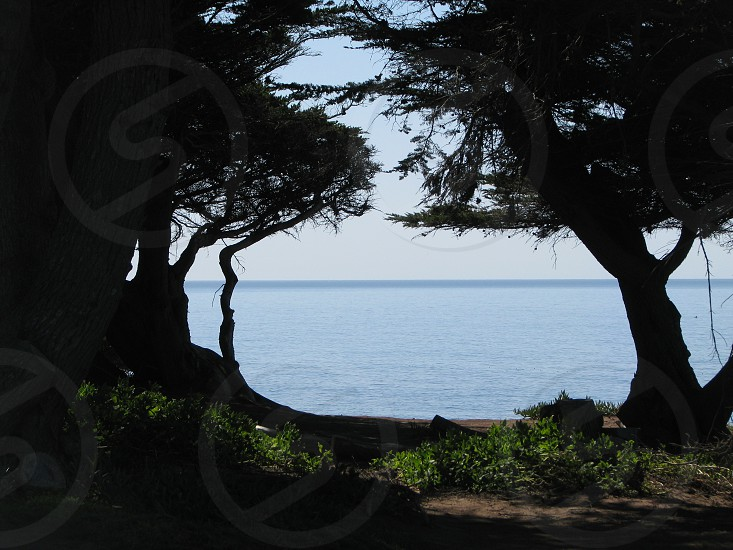 Cambria California photo