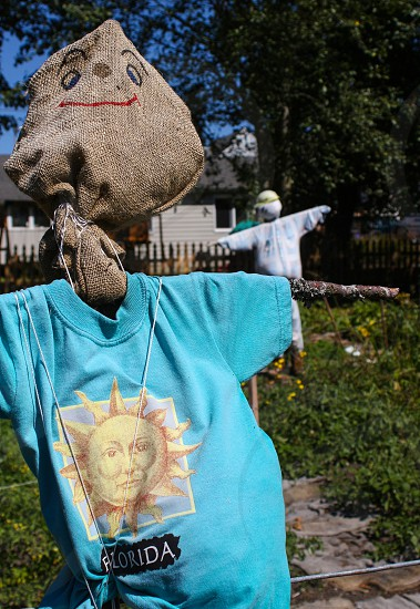 Scarecrow p-patch gardens community garden smile blue vegetables grow photo