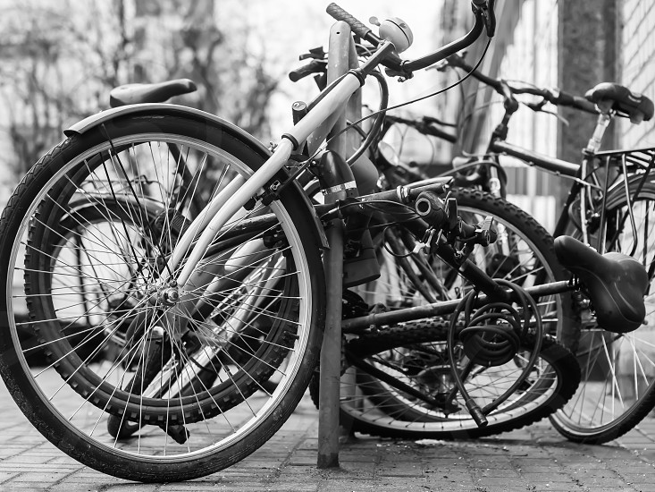 city bikes on the street photo