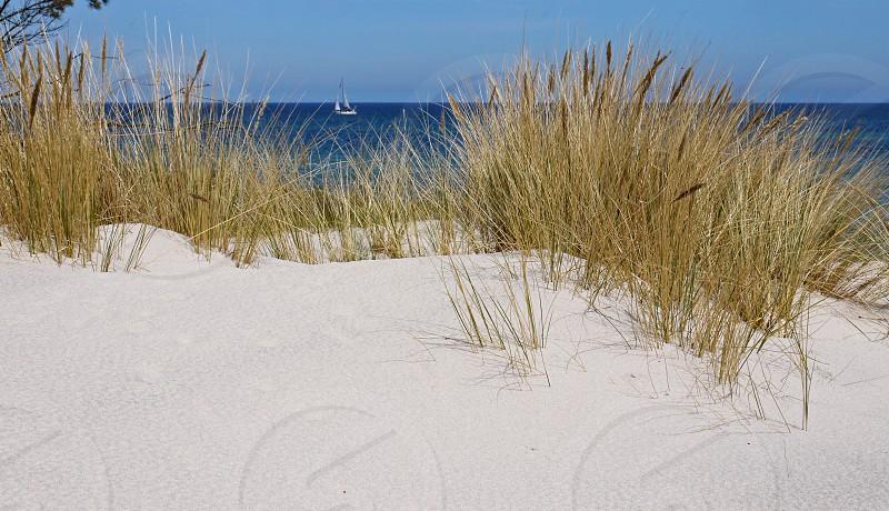 Hel city in Poland. Sand dunes on the Baltic Sea. White sandy beach photo