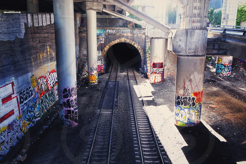 empty railroad track with walls covered with graffiti during daytime photo