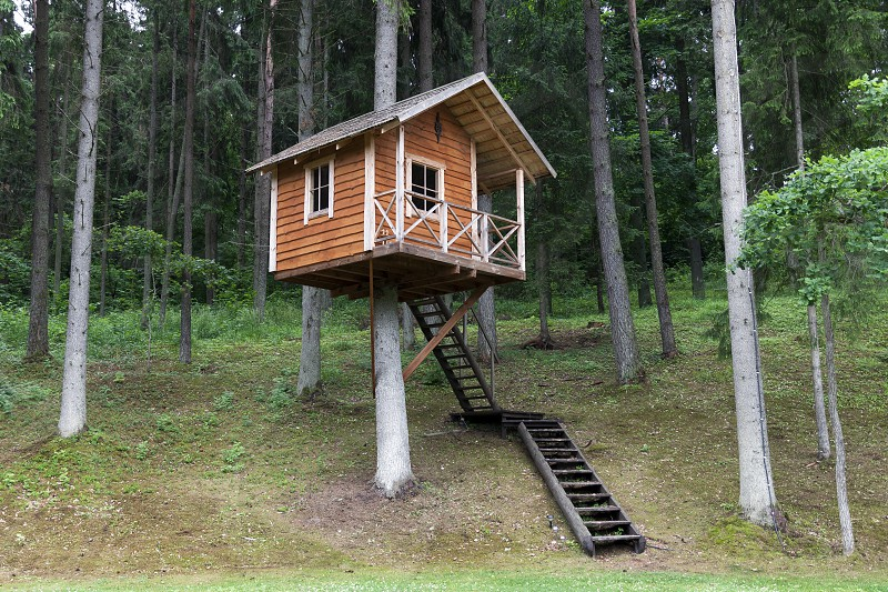 camping cabin tree house forest woods architecture outdoors house photo