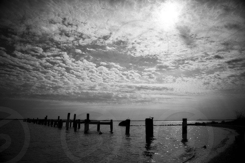 wooden pier post in water under cloudy sky in greyscale photo