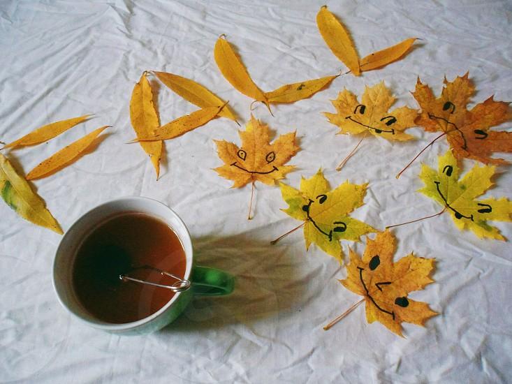 autumn joy photo
