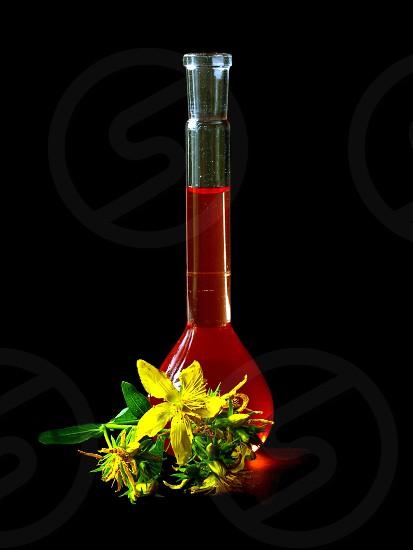medicated oil of St.John`s wort photo
