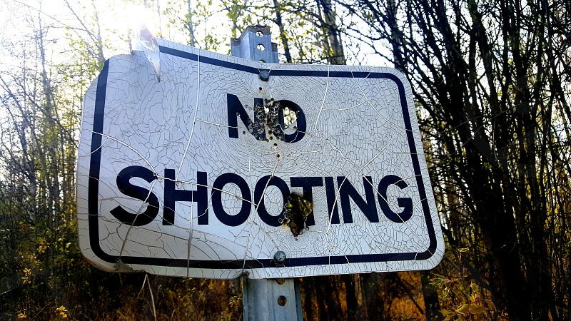 A common sight in rural areas is a street sign on a dirt road riddled with bullet holes. This one specifically requesting No Shooting is blasted with I think bird shot from a shotgun next to town. I actually think I know who shot this sign. 1 of 2 in a set. photo
