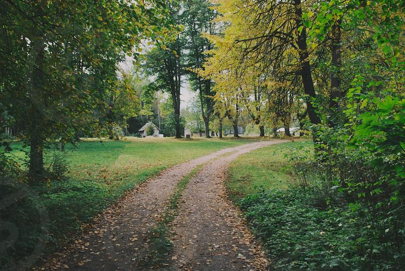 fall autumn photo