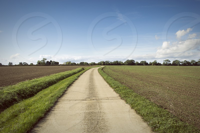 grey road view photo