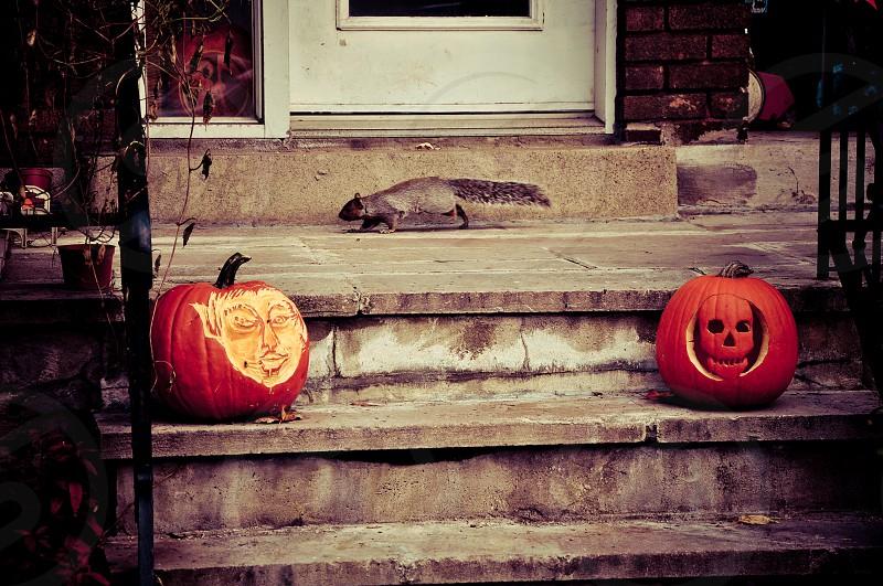 Halloween in Montréal (Canada) photo