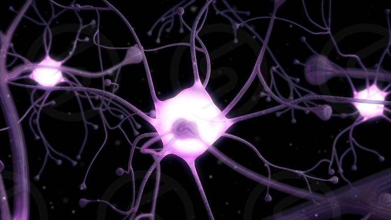 3D illustration of a neuron network photo