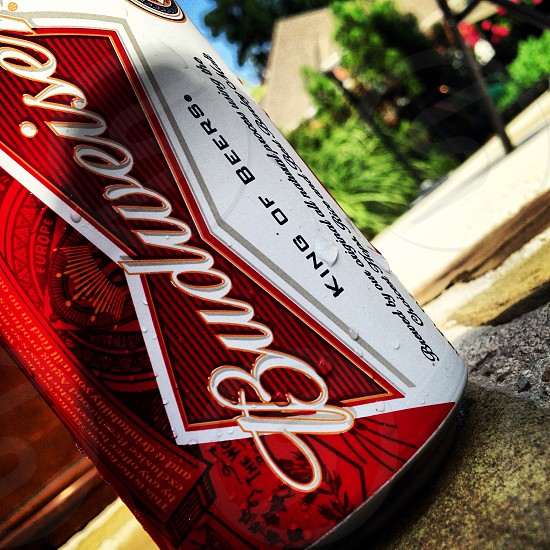 Budweiser king of beers can photo