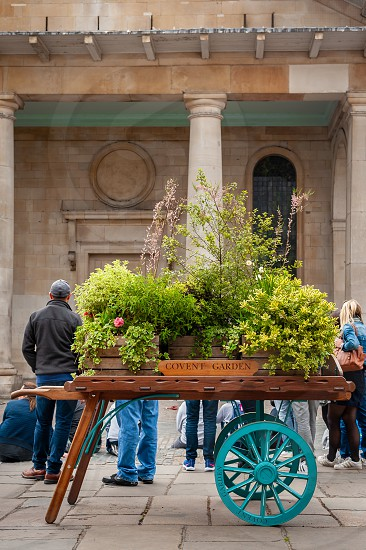 Flowers and plants on wagon display. Shops cafes and bars  in the Piazza in restored market buildings. photo