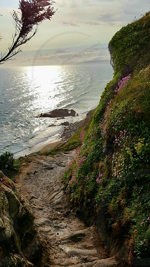 Cornal Coast Cliff Path photo