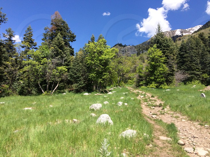 Trails photo